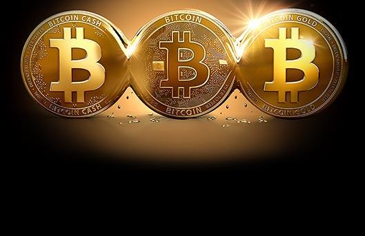 Live bitcoin casino 365